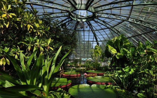 Botanischer Garten Die Sch 246 Nsten Gr 252 Nanlagen Der Schweiz