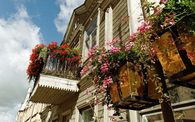 balkon bepflanzen balkon bepflanzen praktische tipps und wichtige hinweise balkon bepflanzen. Black Bedroom Furniture Sets. Home Design Ideas